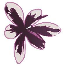 Fleurs de Soin Castries